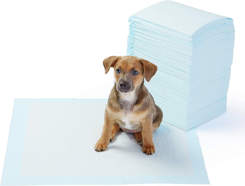 Toallitas de entrenamiento para mascotas